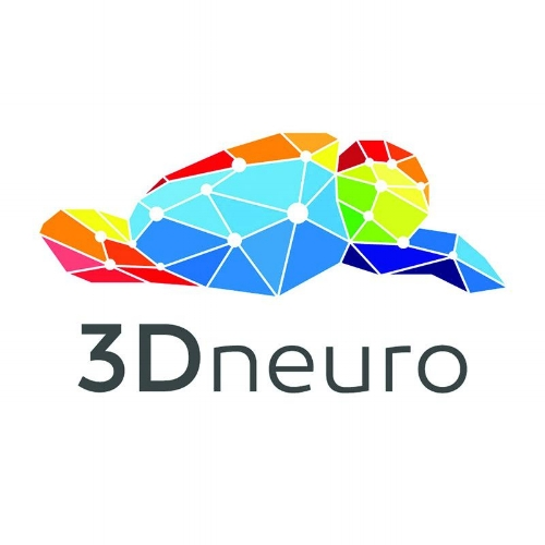 3Dneuro